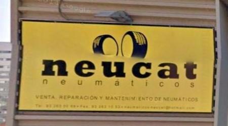 Neumáticos Neucat